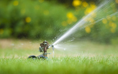 Steps to Water Conservation Are Right Under Your Feet