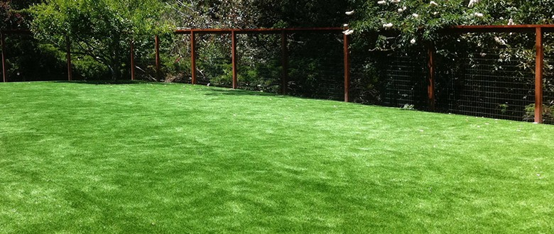 How NewGrass Increases Property Value