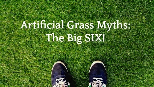 Top 6 Myths Concerning Artificial Grass