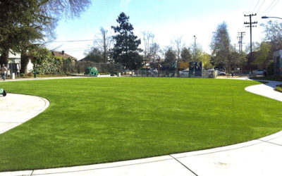 Cooler Artificial Grass, Why You Need It