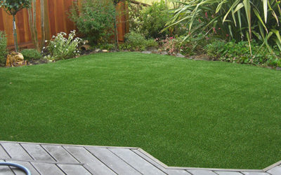 Why NewGrass Looks Like Real Grass